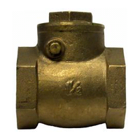 50mm Brass Swing Check Valve